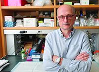 Dr. Miklos Toth